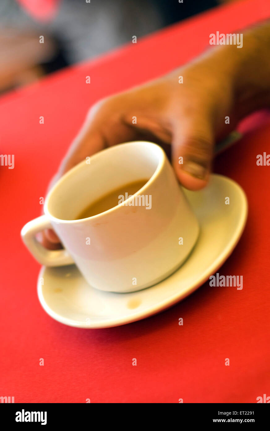 Hand holding white tea cup with saucer on red table ; Goa ; India - Stock Image