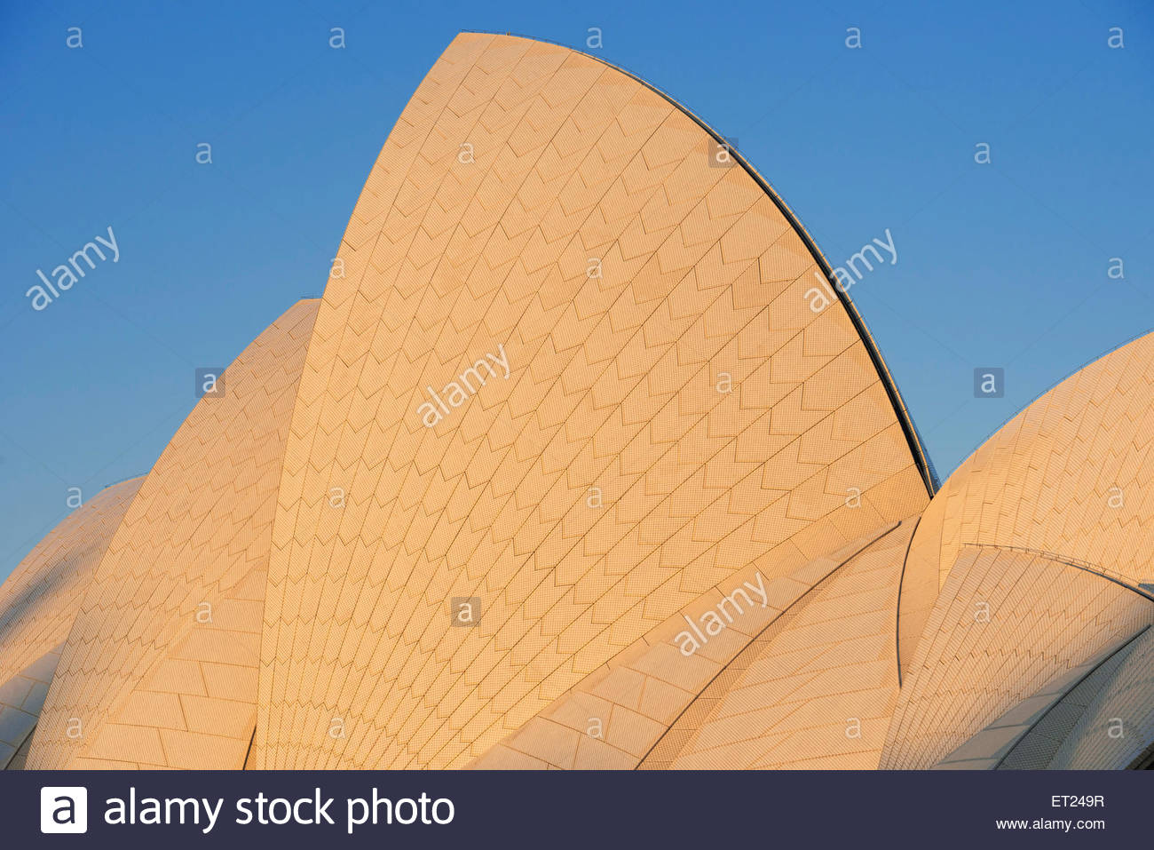 Opera House, Sydney, New South Wales, Australia, - Stock Image