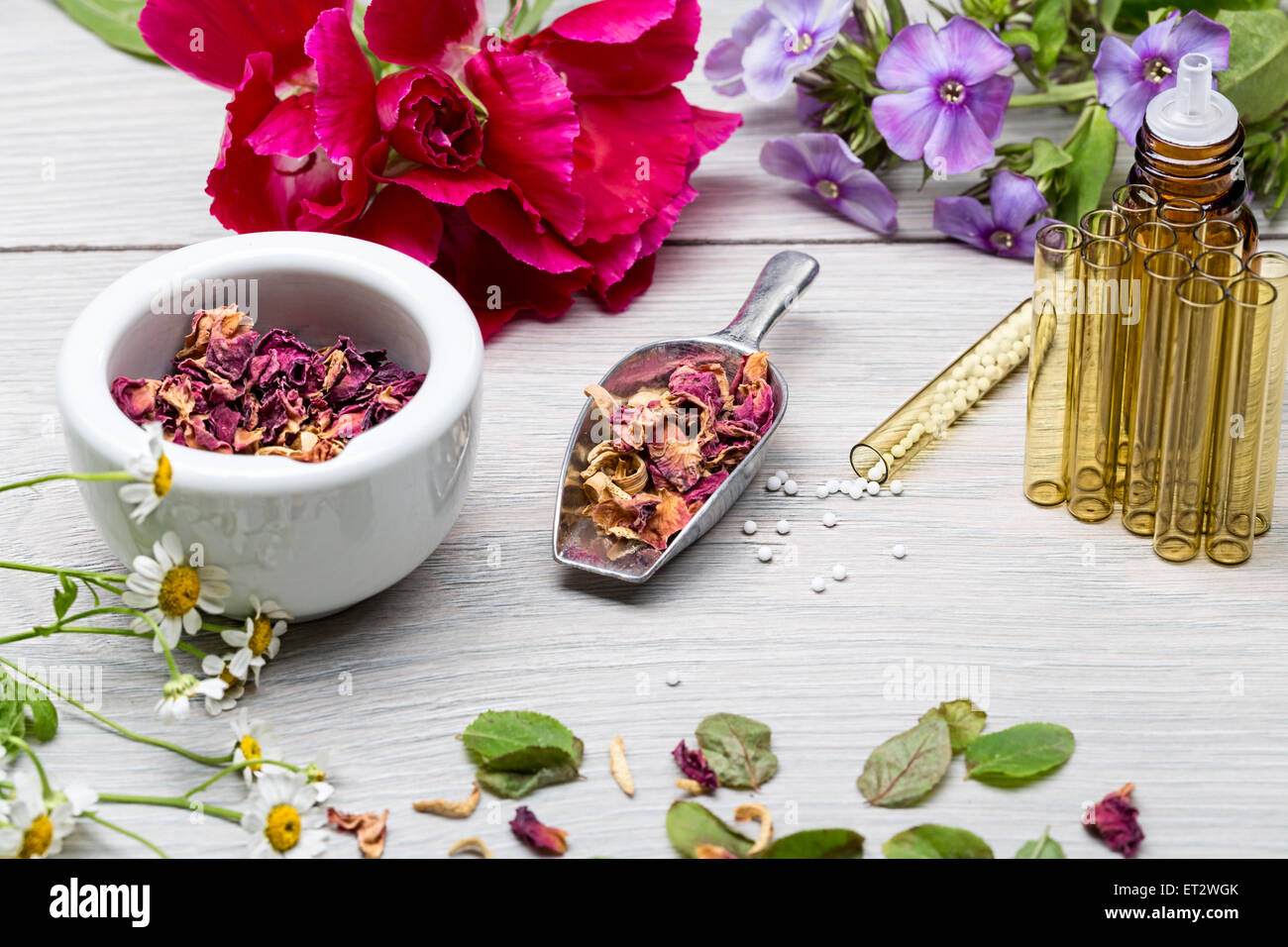 homeopathy lab with herbals and flowers - Stock Image