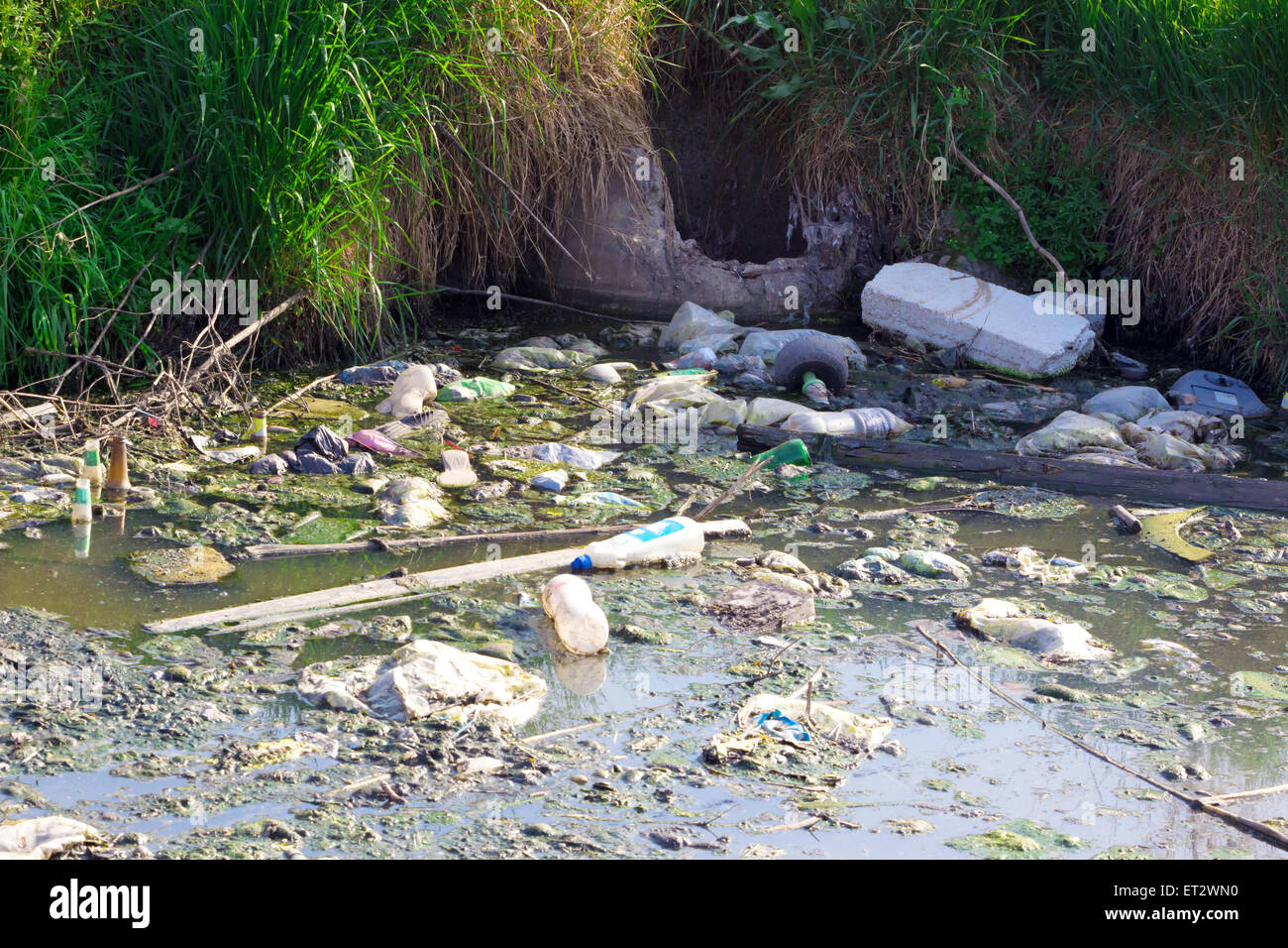 Garbage floating on the river - Stock Image