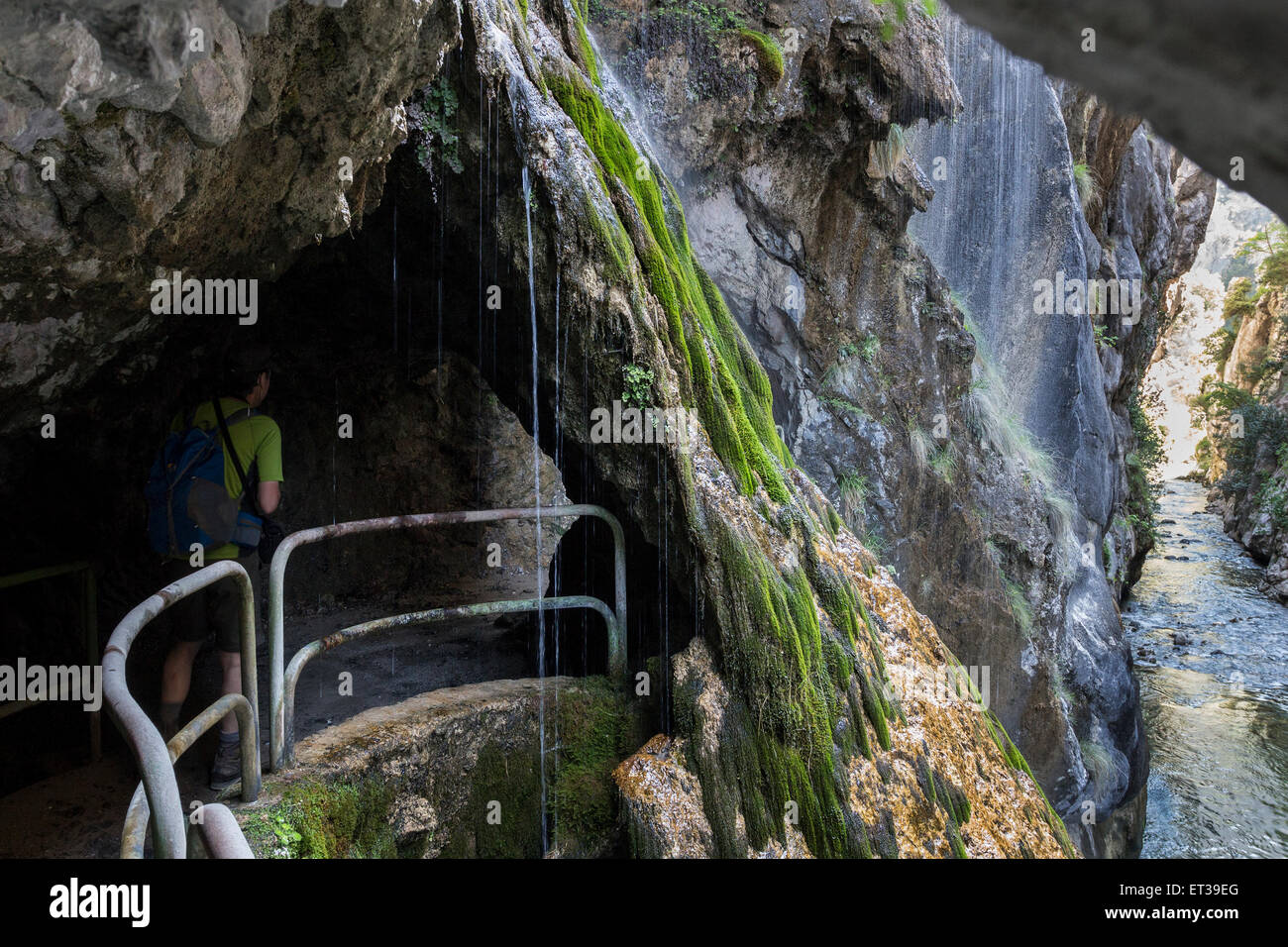 Walker Passing Underneath a Waterfall in the Cares Gorge Picos De Europa Cordillera Cantabria Spain - Stock Image