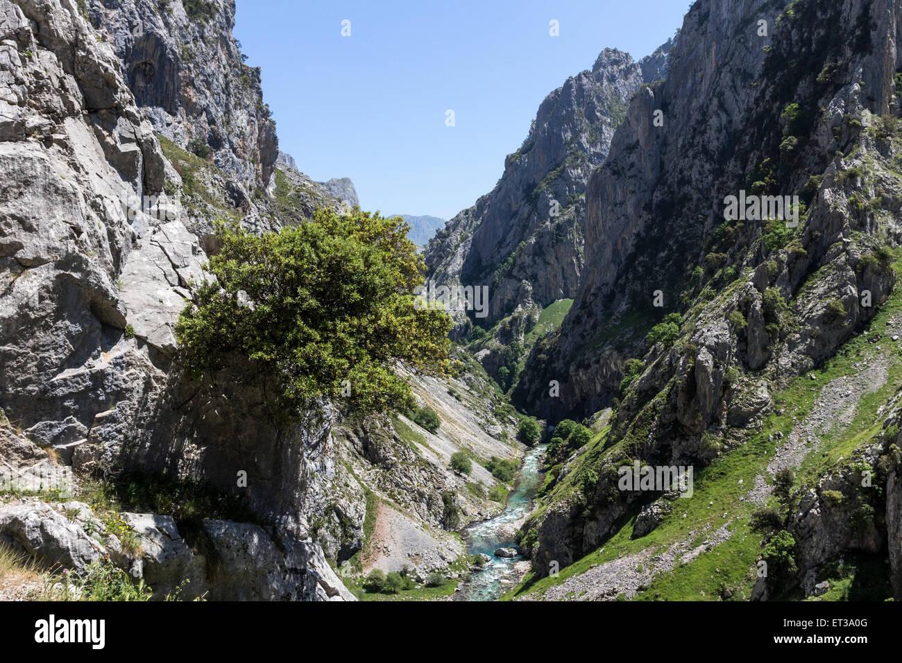 The Cares Gorge Picos De Europa Cordillera Cantabria Spain - Stock Image