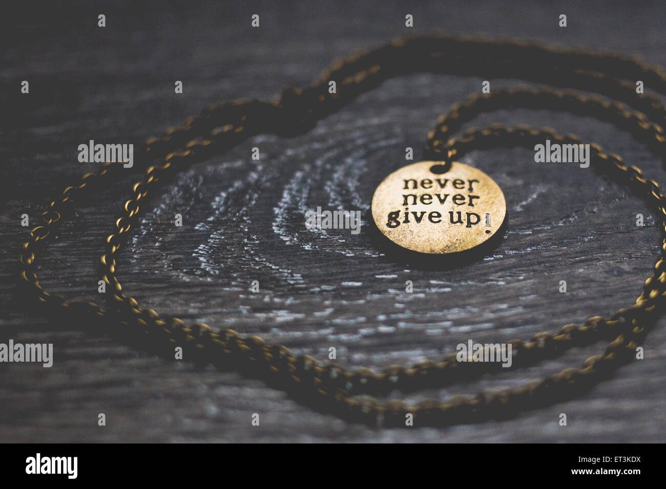 Round brass pendant with words never give up stock photo 83674358 round brass pendant with words never give up aloadofball Images