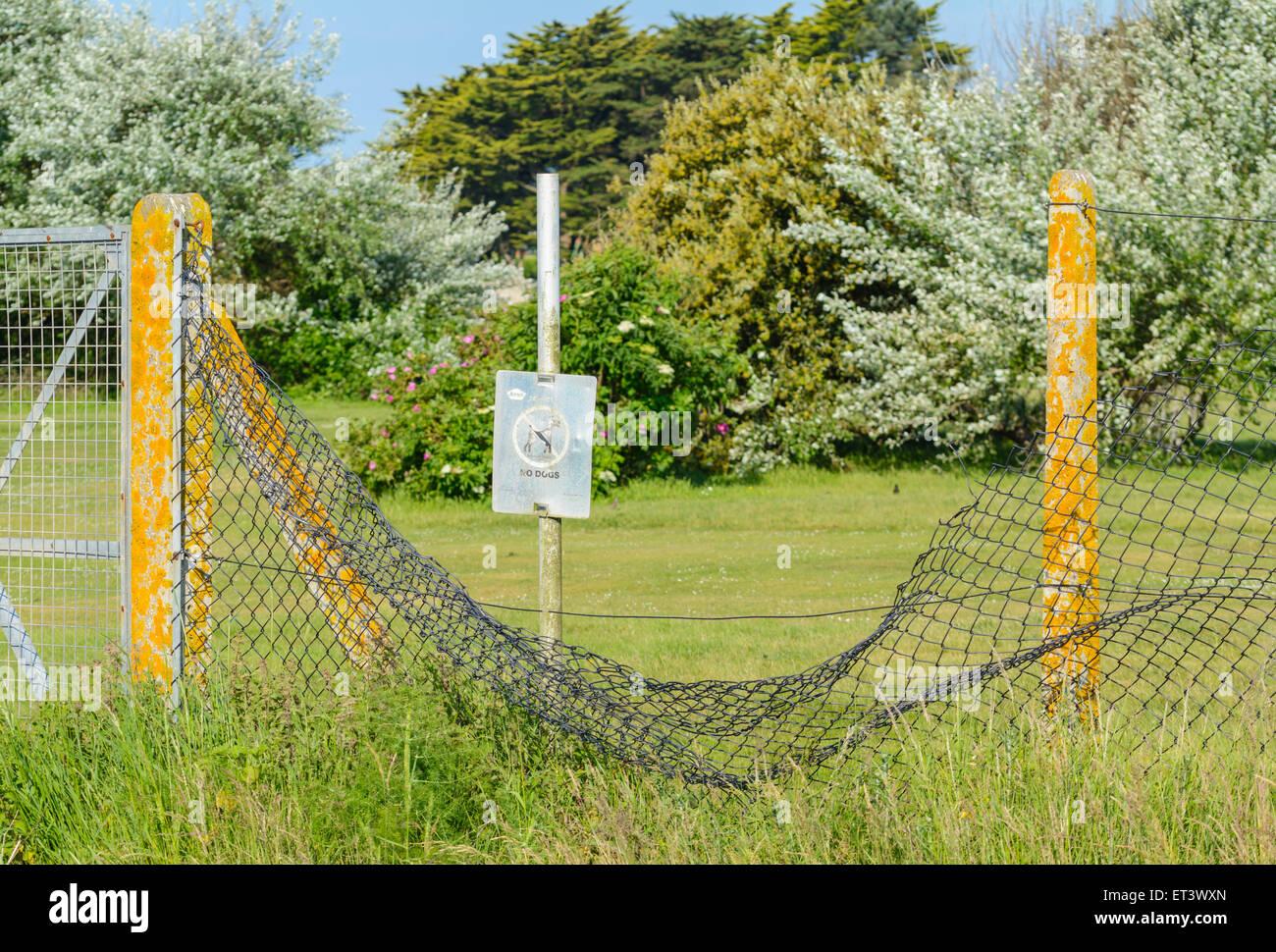 Vandalised mesh metal fence. - Stock Image