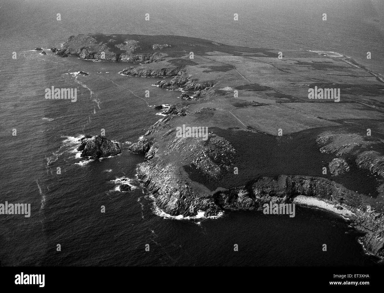 The Saltee Islands, 5 kilometres off the southern coast of County Wexford, Ireland. 24th August 1953. - Stock Image