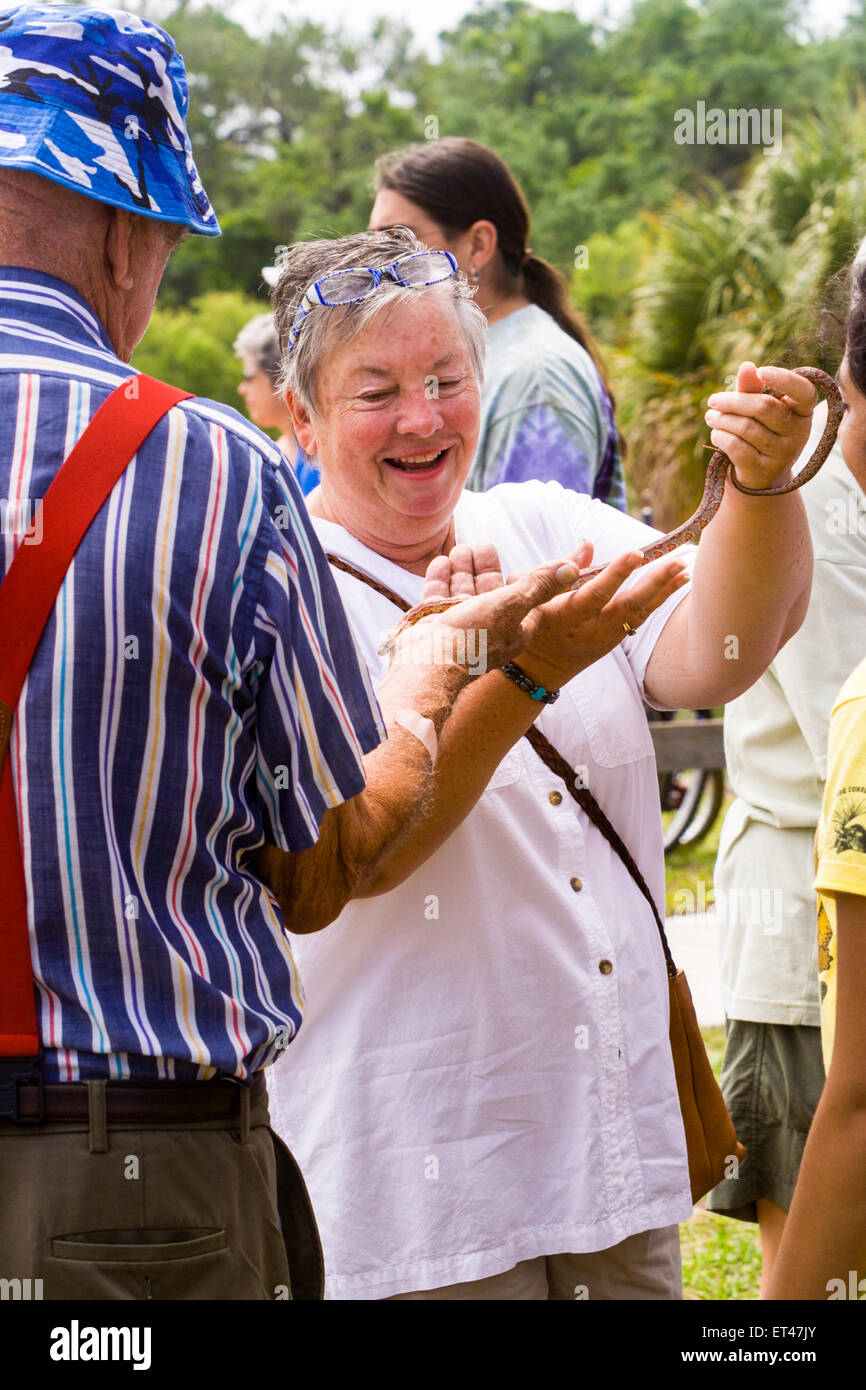 Senior man and woman handle corn snake at an Earth Day exhibit - Stock Image
