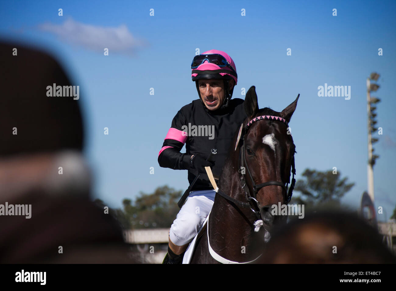Horseman. Sad look.  Grimace. Loser, disappointment, sunny day, Jockey, look, Horse. Front - Stock Image