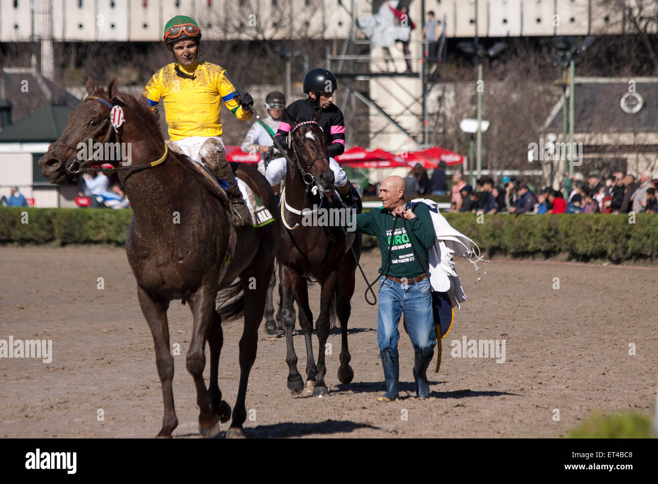 Muddy horseman. Sad look.  Grimace. Loser, dirty, disappointment, colorful, sunny day, congratulation, public, race - Stock Image