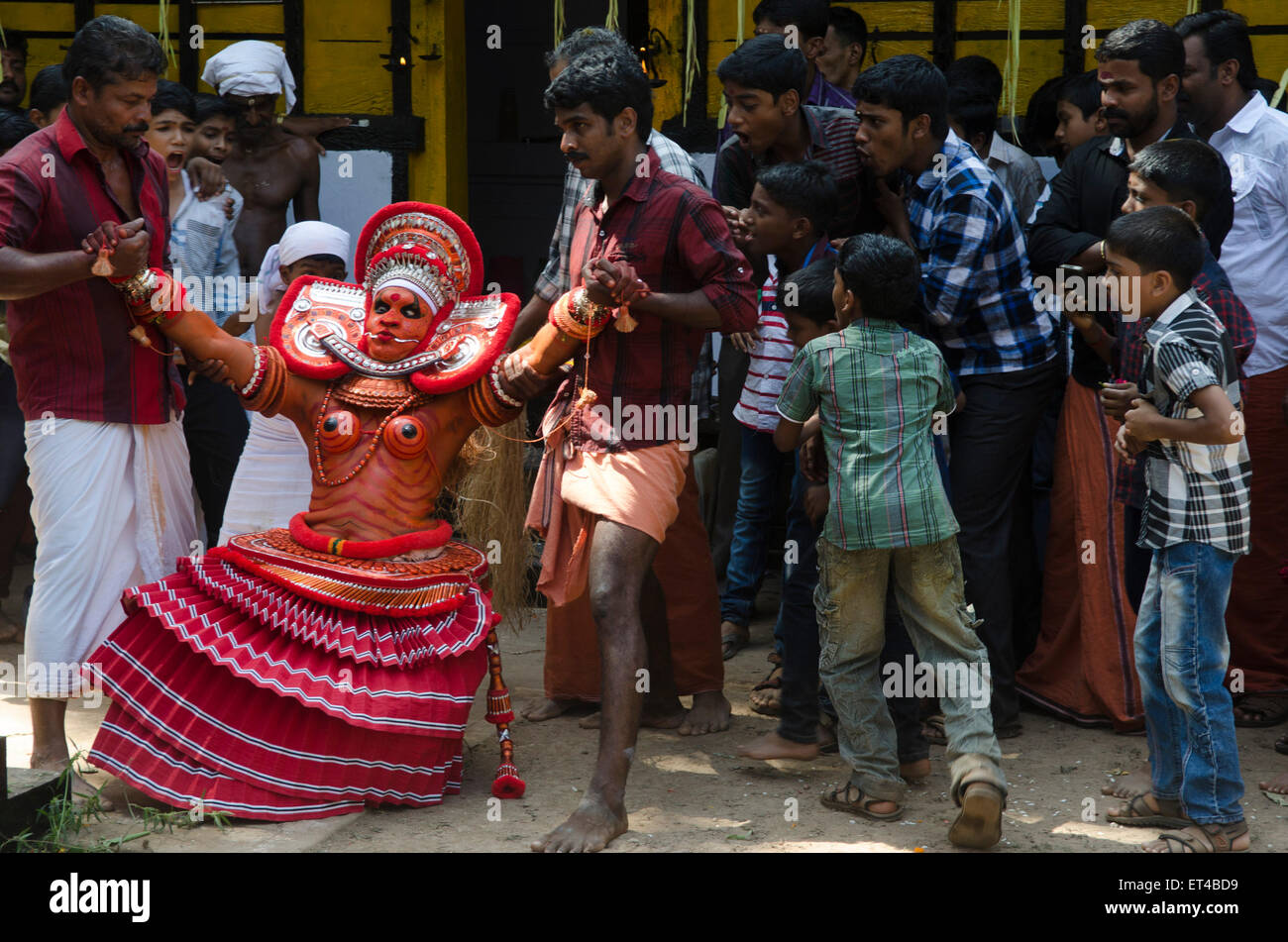 a dancer deep in trance is pulled around the arena during the ancient tradition of Thayyam from Malabar in northern - Stock Image