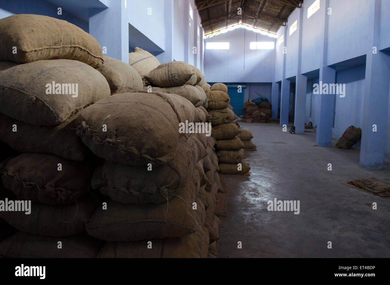 Large sacks are stacked at a ginger distribution warehouse in Fort Cochin, Kerala, South India - Stock Image