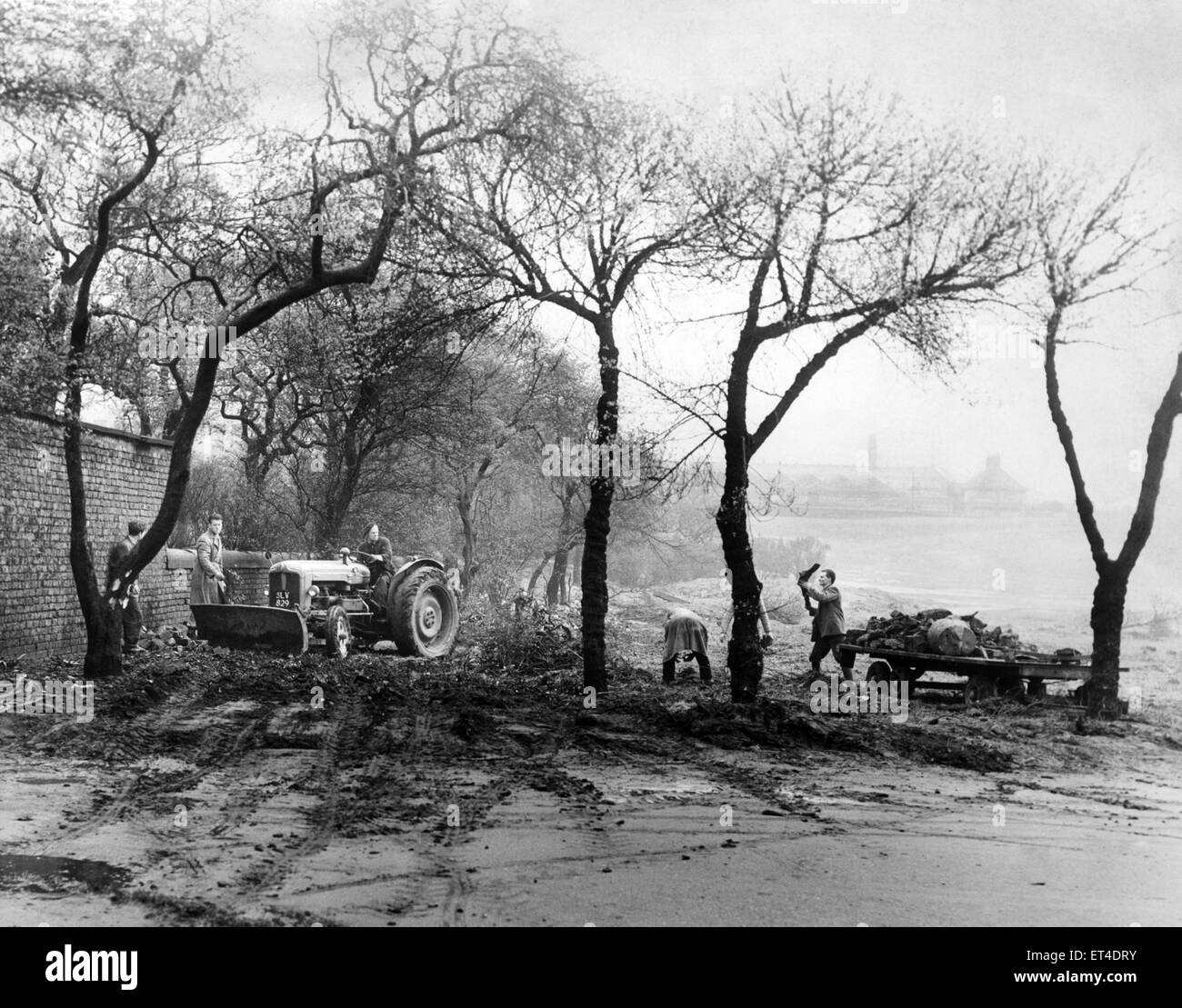 Cleanup at Wavertree Park, Liverpool, Merseyside. 28th April 1959. - Stock Image