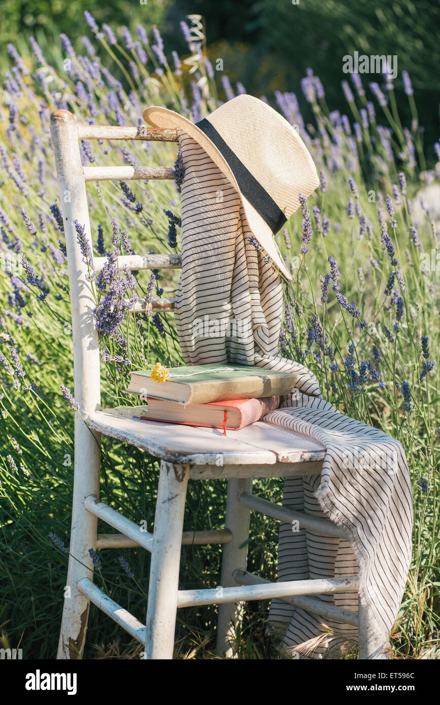 Vintage chair, books and hat in lavender field - Stock Image