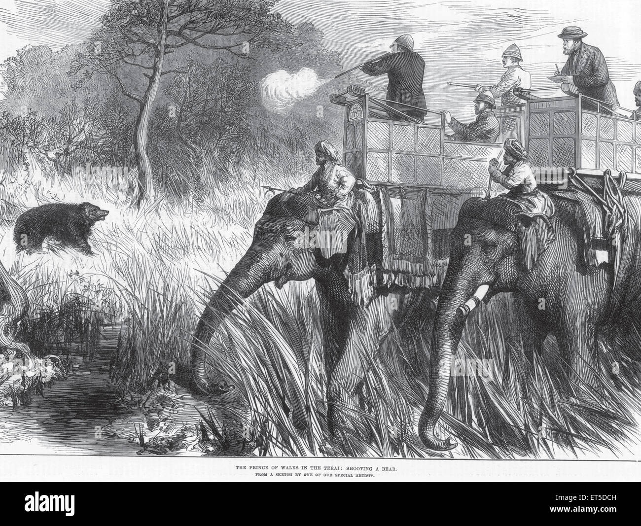 Royalty on Tour The Prince of Wales in the Terai Shooting a Bear ; India - Stock Image