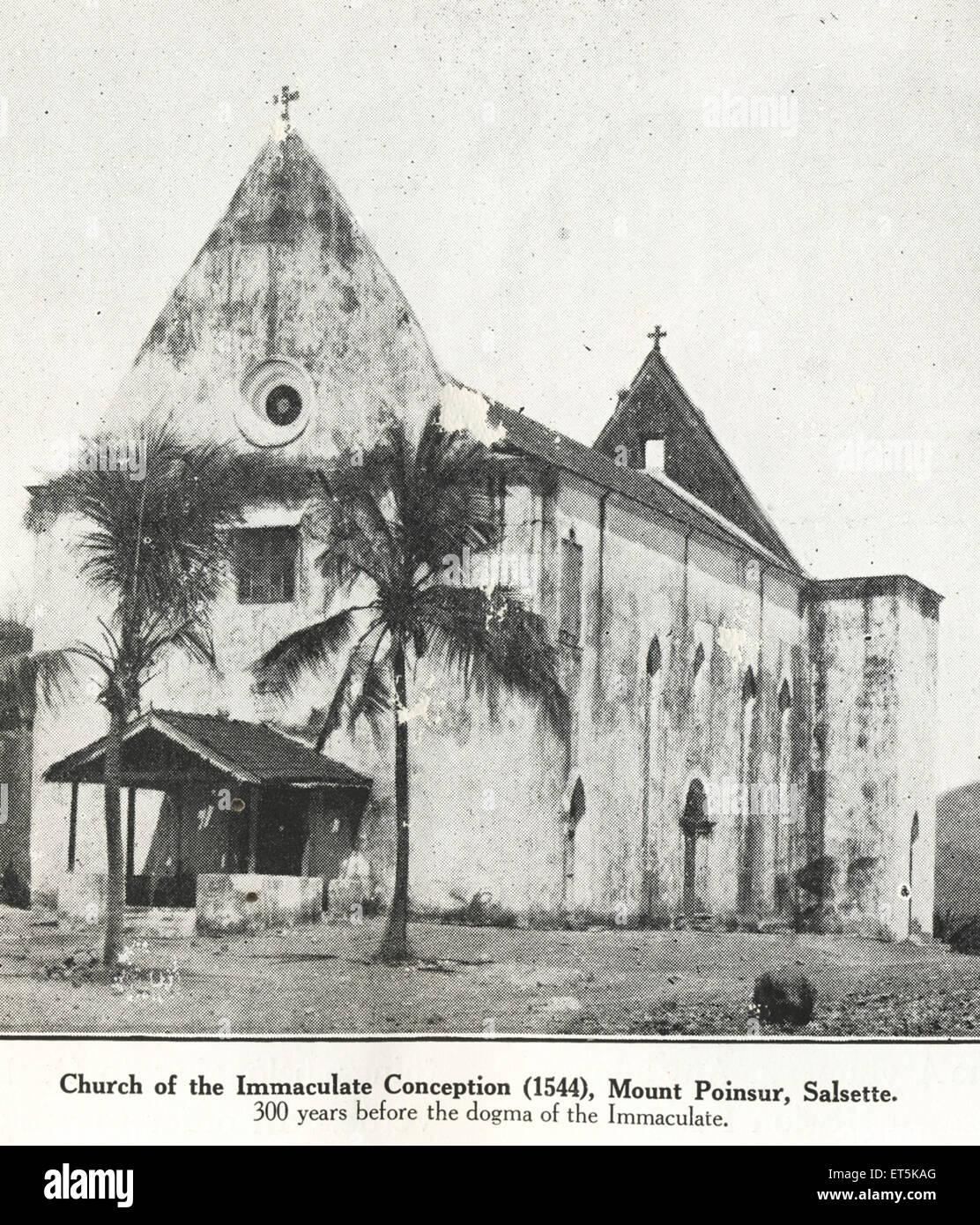 dogmas of the catholic church pdf