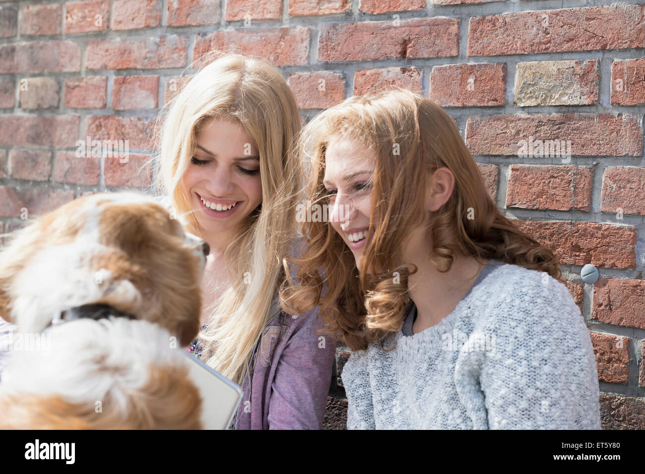 Two friends playing dog and smiling, Munich, Bavaria, Germany - Stock Image