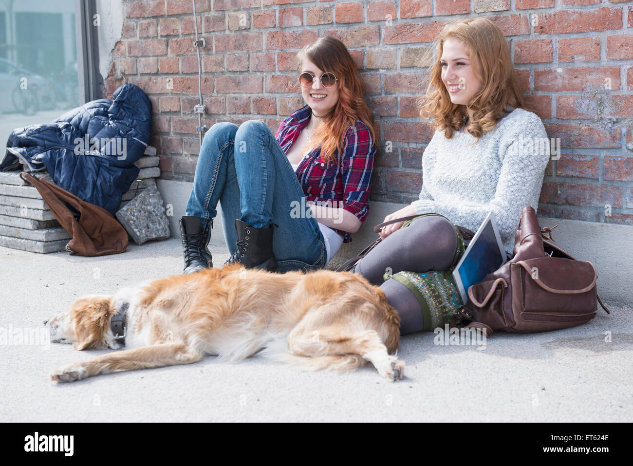 Two friends with dog in front of brick wall, Munich, Bavaria, Germany - Stock Image
