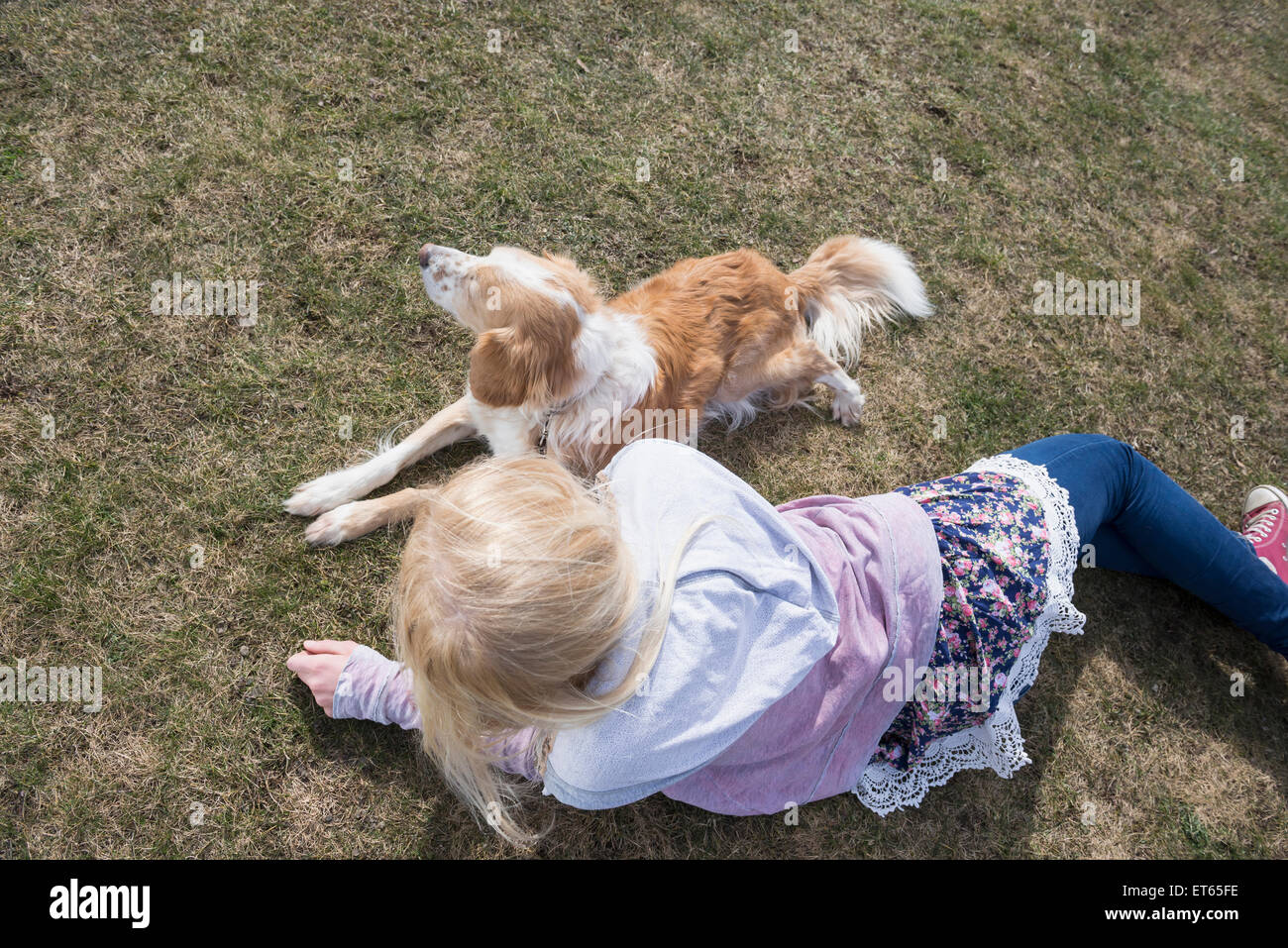 Teenage girl lying in park with her dog, Munich, Bavaria, Germany - Stock Image
