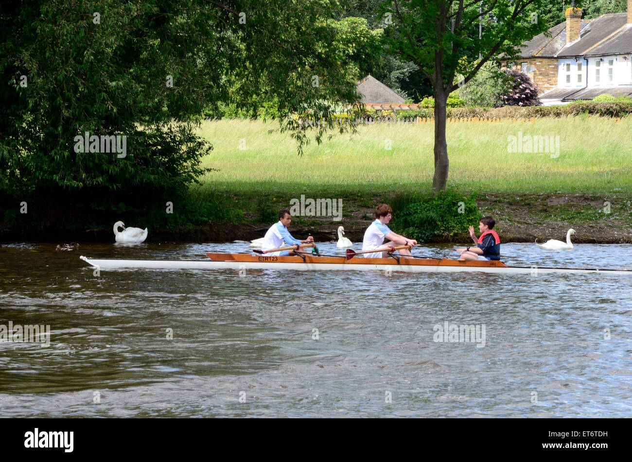 A coxed pair rowing  boat crew practicing on The River Thames in Windsor. - Stock Image