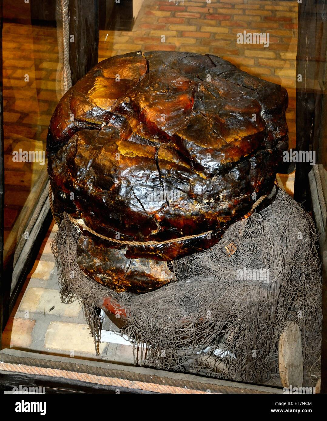 Big amber stone, weight 236 kilo, found in the south Baltic Sea, Bärnstensmuséet, Amber Museum, Kämpinge, - Stock Image