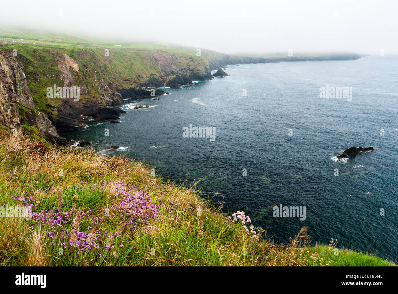 Low level clouds over Slea Head in Dingle, Ireland - Stock Image