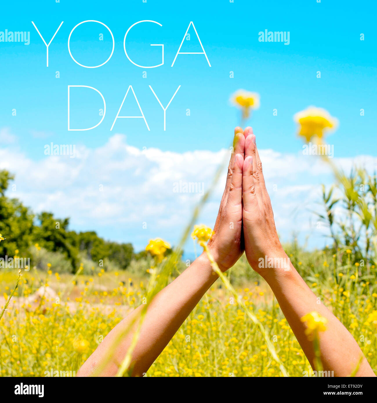 closeup of the hands of a young caucasian yogi man meditating outdoors in anjali mudra and the text yoga day - Stock Image