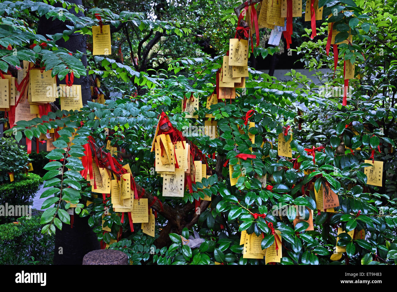 Paper prayers and wishes in the The Shanghai Wen Miao - Shanghai Confucian Temple is an ancient temple  ( 700 years - Stock Image