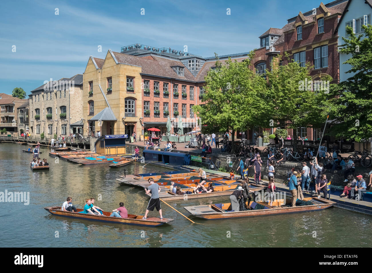 Popular tourist area on River Cam, Cambridge, England UK. - Stock Image