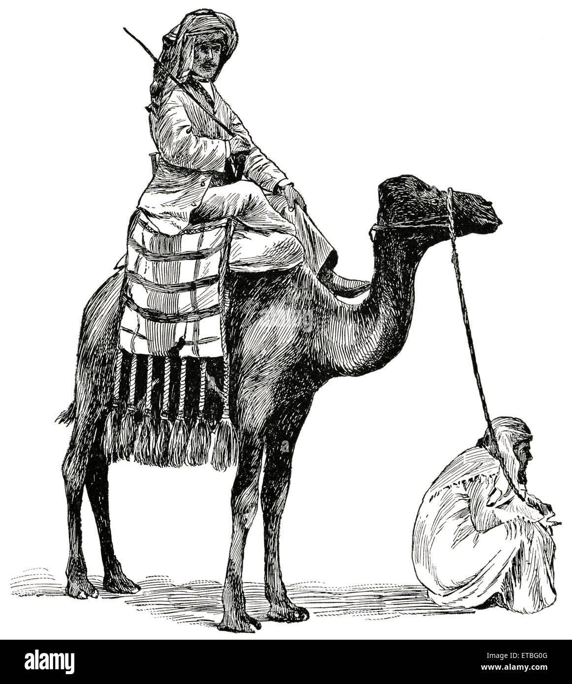 Two Men with Camel, Aden, Arabia, 'Classical Portfolio of Primitive Carriers', by Marshall M. Kirman, World - Stock Image