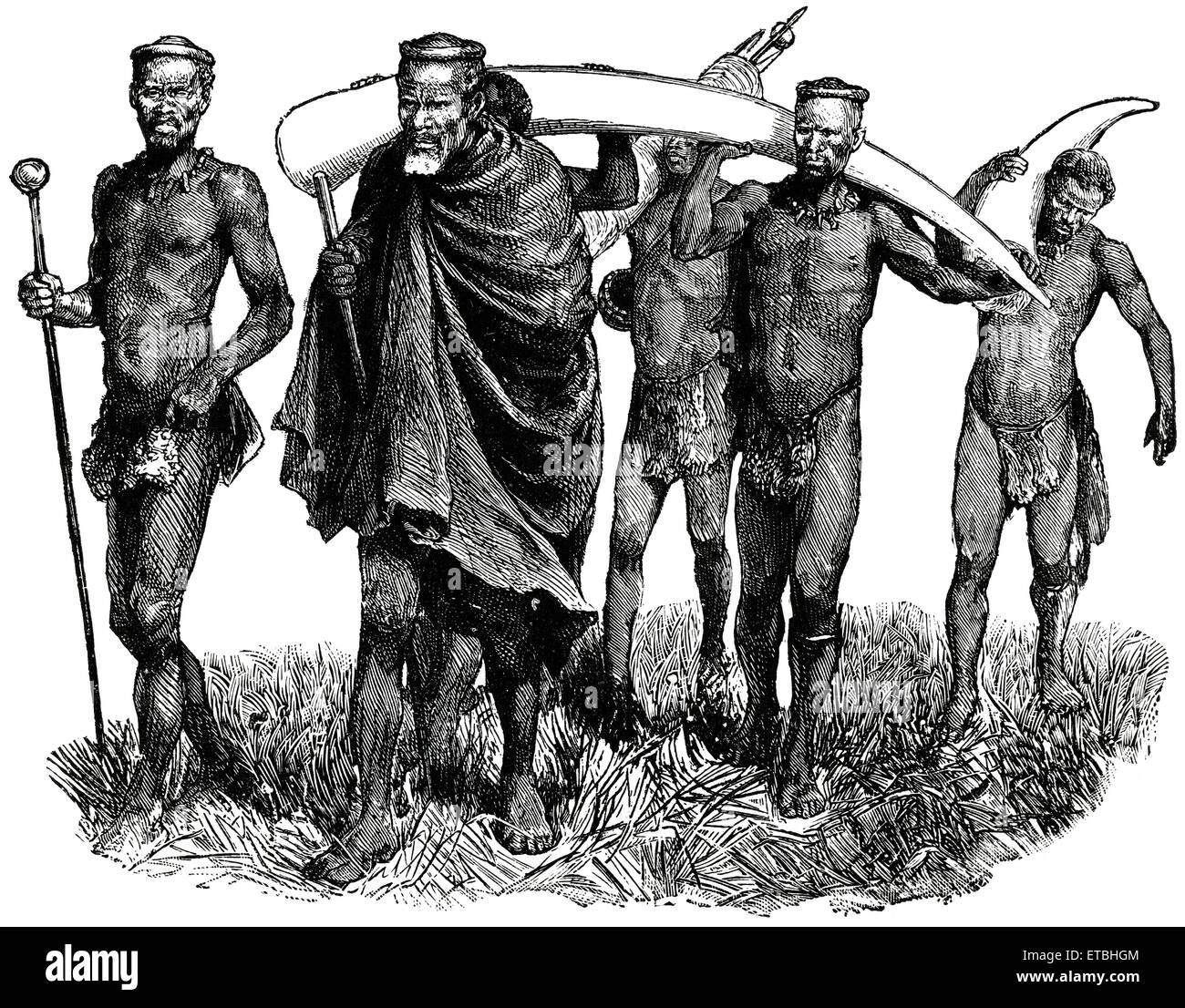 Group of Men Carrying Large Elephant Tusks, Africa, 'Classical Portfolio of Primitive Carriers', by Marshall - Stock Image