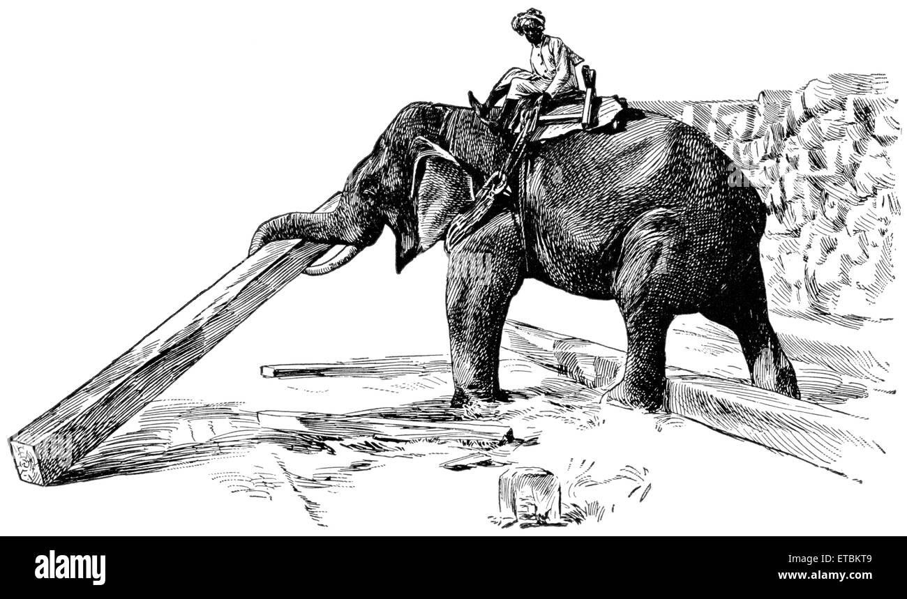 Elephant Raising Timber, Rangoon, Burma, 'Classical Portfolio of Primitive Carriers', by Marshall M. Kirman, - Stock Image