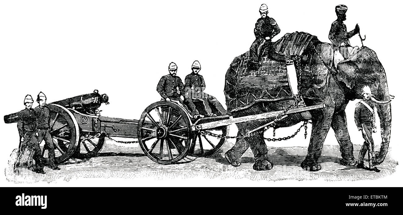 Elephant Carrying Cannon During War, Afghanistan, 'Classical Portfolio of Primitive Carriers', by Marshall - Stock Image