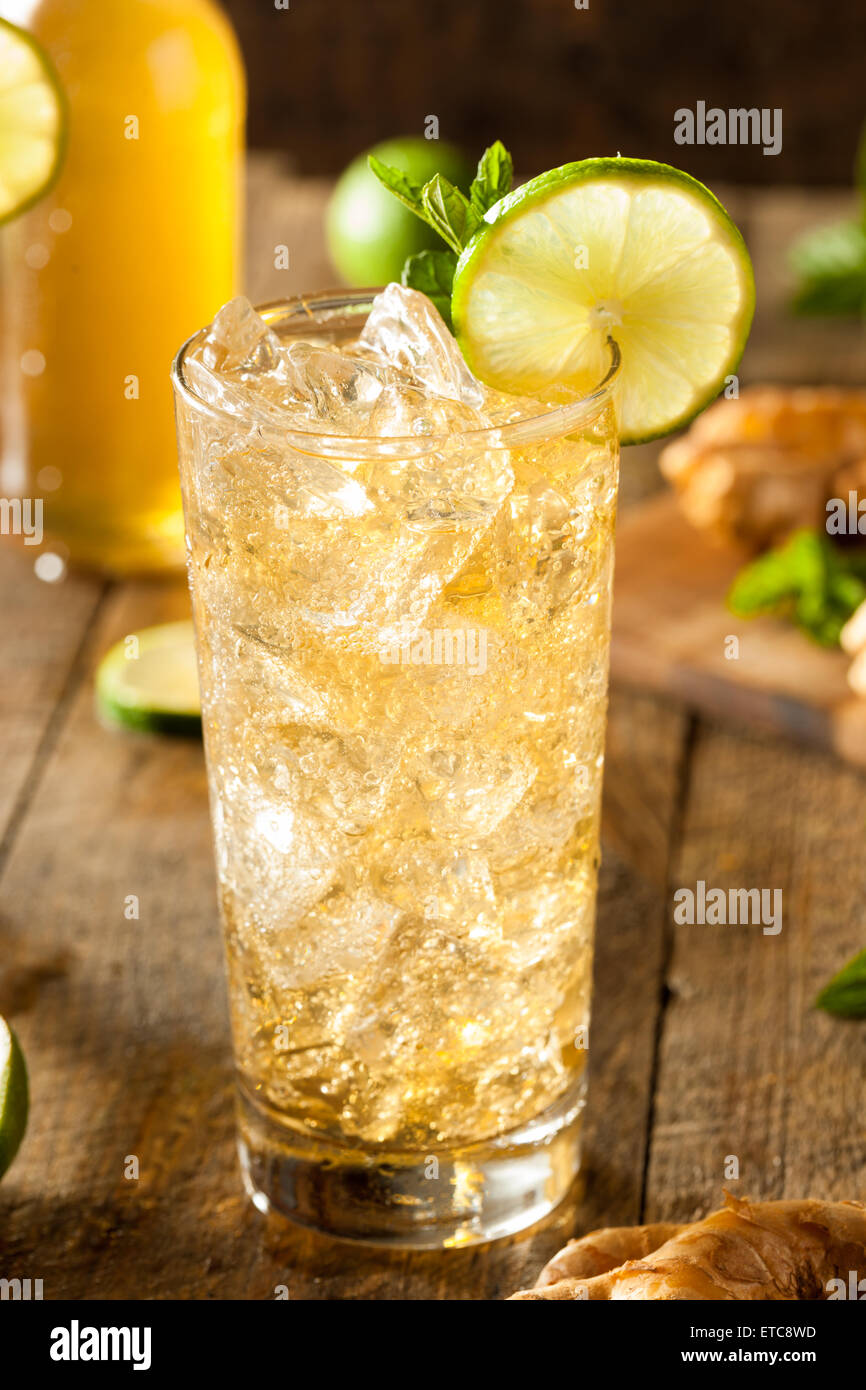 Refreshing Golden Ginger Beer with Lime and Mint - Stock Image