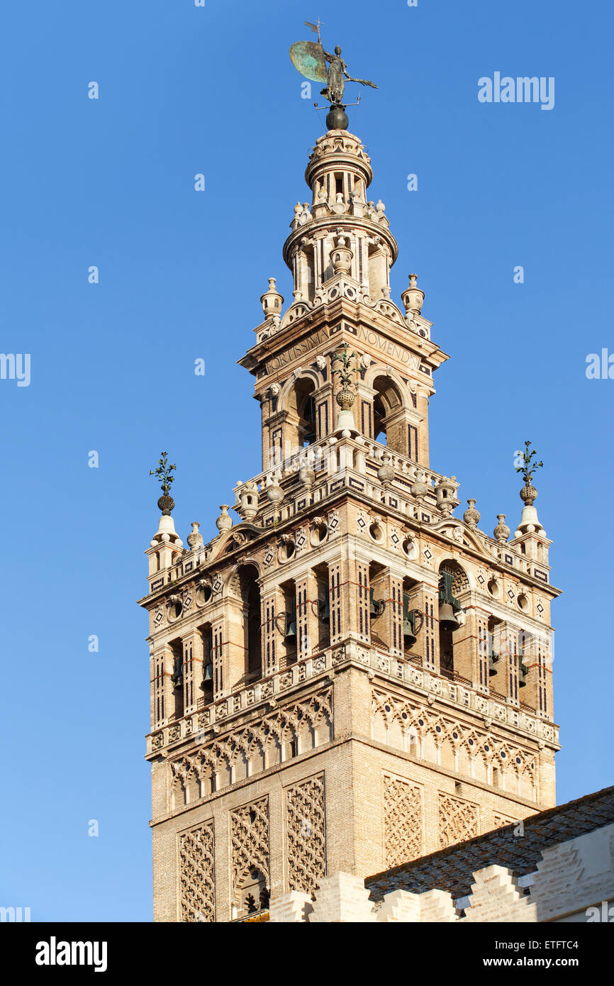 Seville Cathedral bell tower - Andalucia, Spain - Stock Image