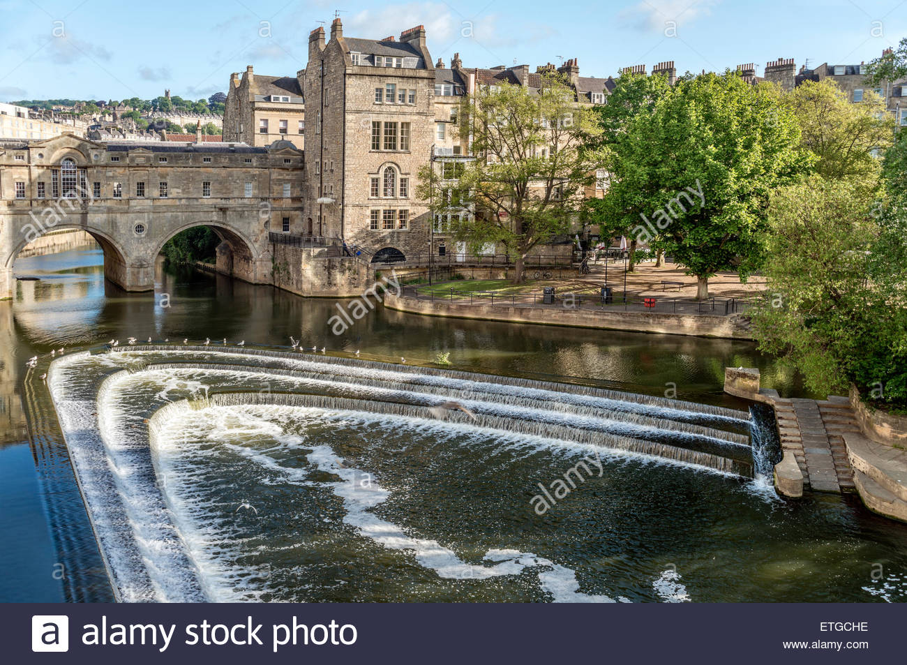 Pulteney Bridge across the River Avon seen from the Parade Gardens, Bath, Somerset, England | Pulteney Bridge ueber - Stock Image