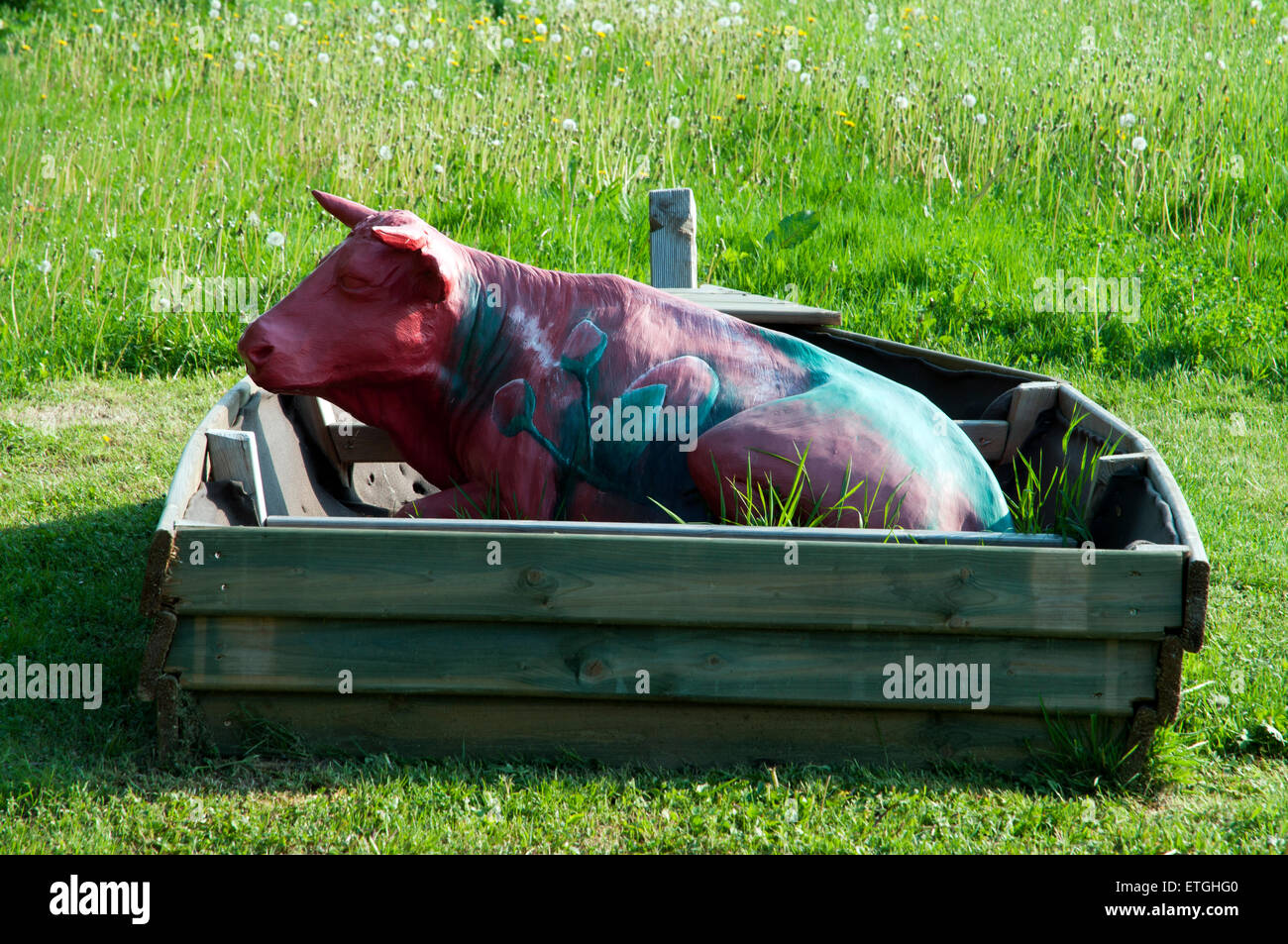 Art project Cow made from papier mache lies in a boat on a meadow - Stock Image