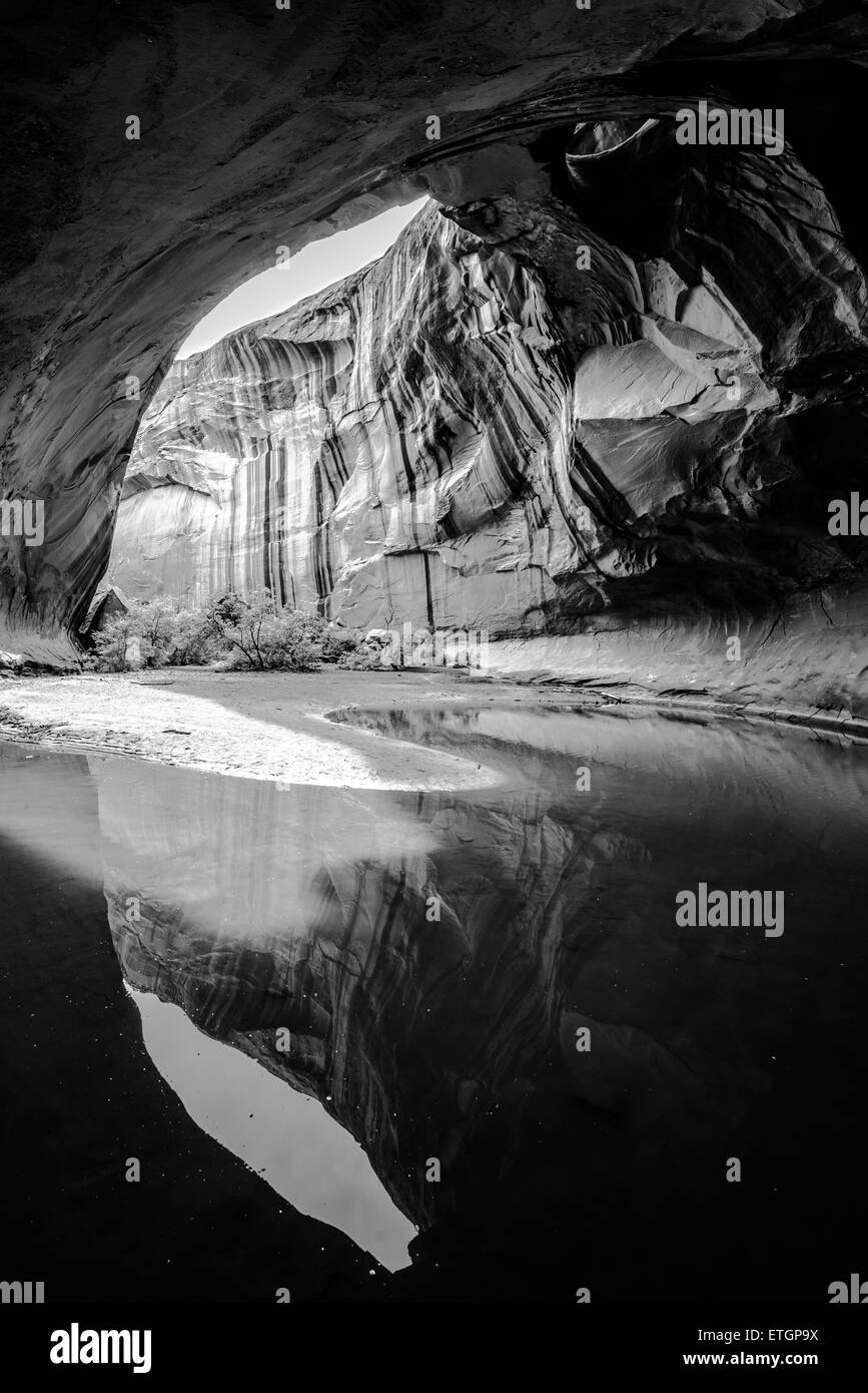 Wide angle,black and white, Vertical composition Golden Cathedral Neon Canyon Escalante National Park Utah Stock Photo