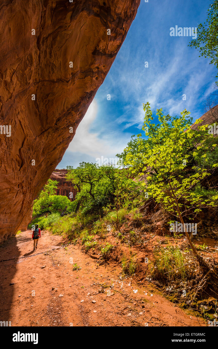 Girl Hiker Backpacker in the Neon Canyon Utah Escalante National Park Stock Photo