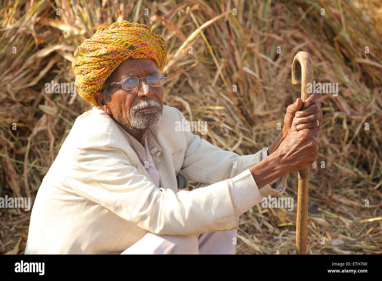 Portarit of Rajasthani man in white clothes and colourful turban, Pushkar, Rajasthan, India - Stock Image