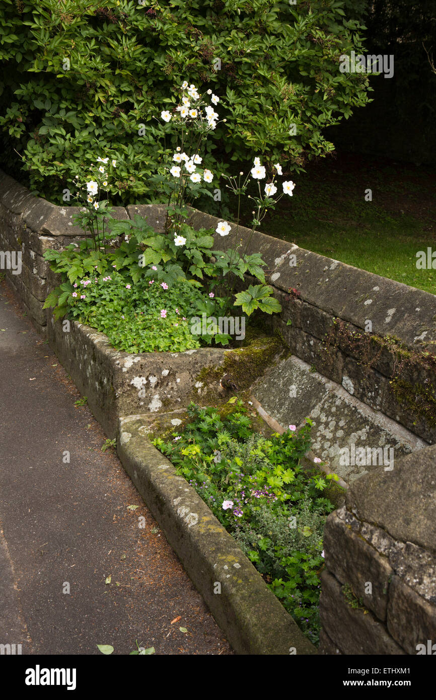 UK, England, Derbyshire, Eyam, Church Street, the Ever End Troughs, beside the Sheep Roast - Stock Image