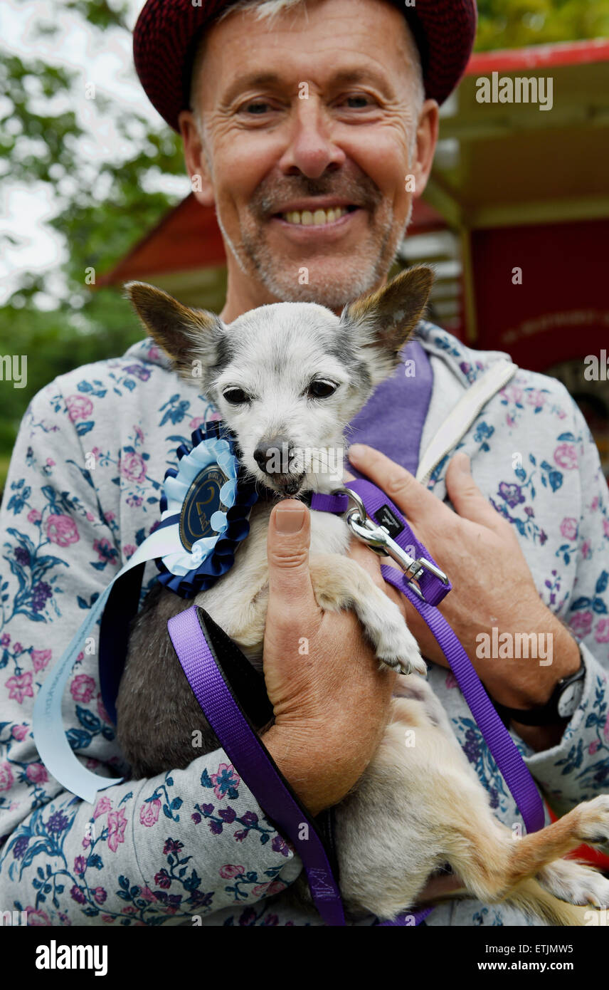 Brighton, UK. 14th June, 2015. Zoro a 17year old Chihuahua came second in the veteran class with owner Richard Walker - Stock Image