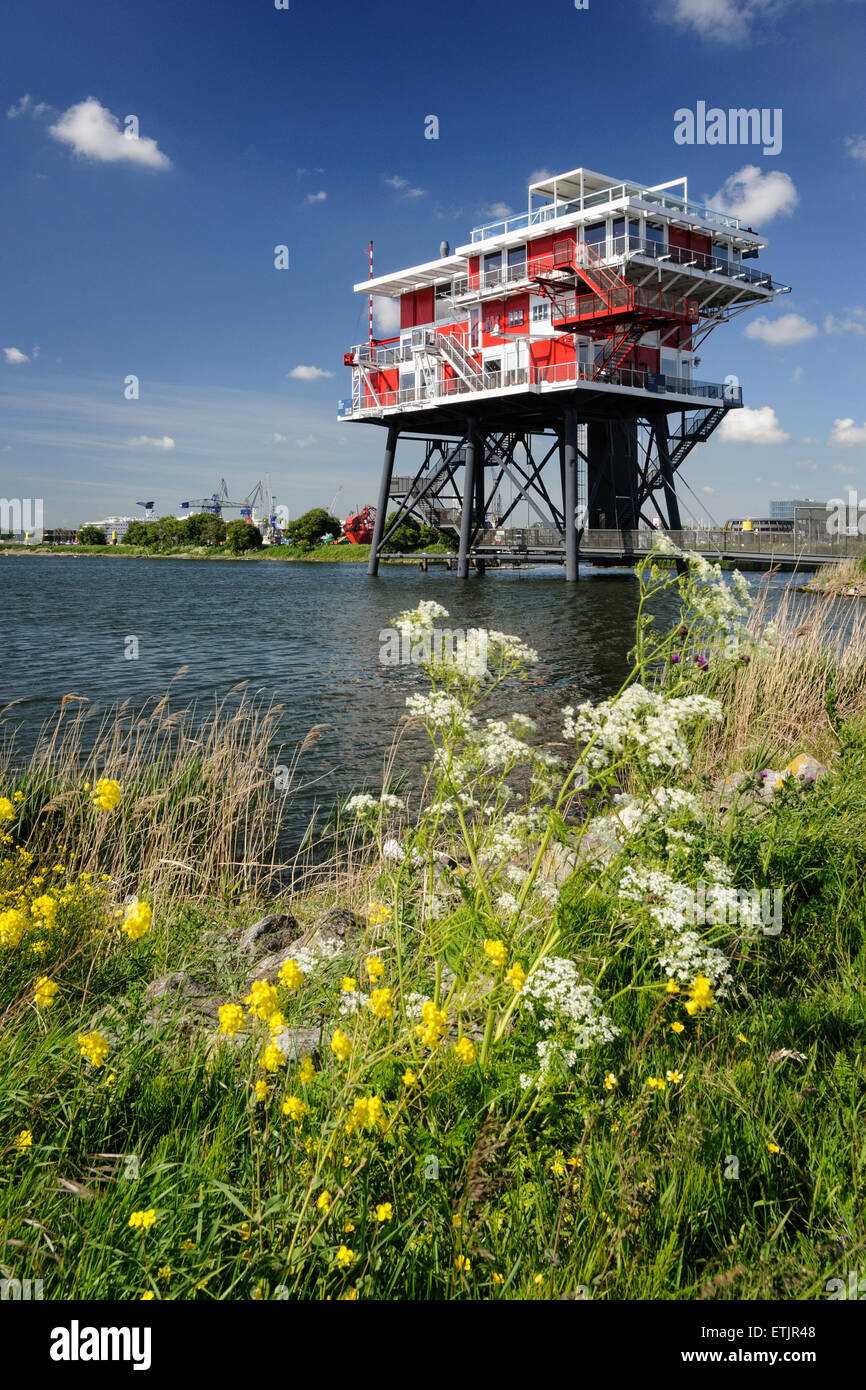 Netherlands, Amsterdam, Westpoort district, the so-called REM Island, a former sea platform - Stock Image