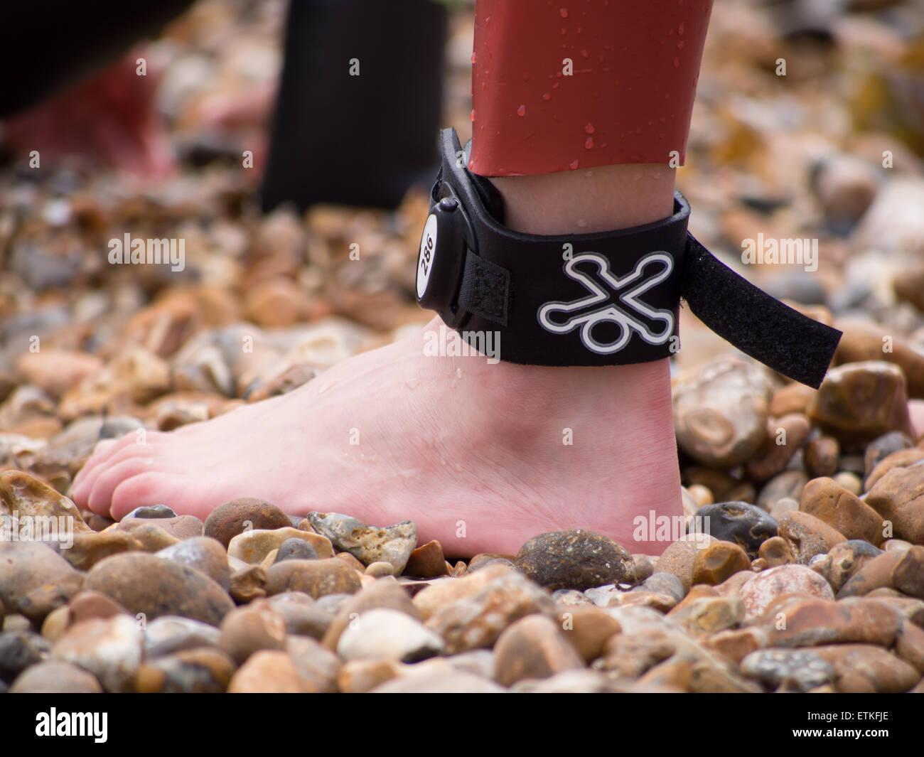 A sports timing chip on the ankle of a competitor taking part in a triathlon. - Stock Image