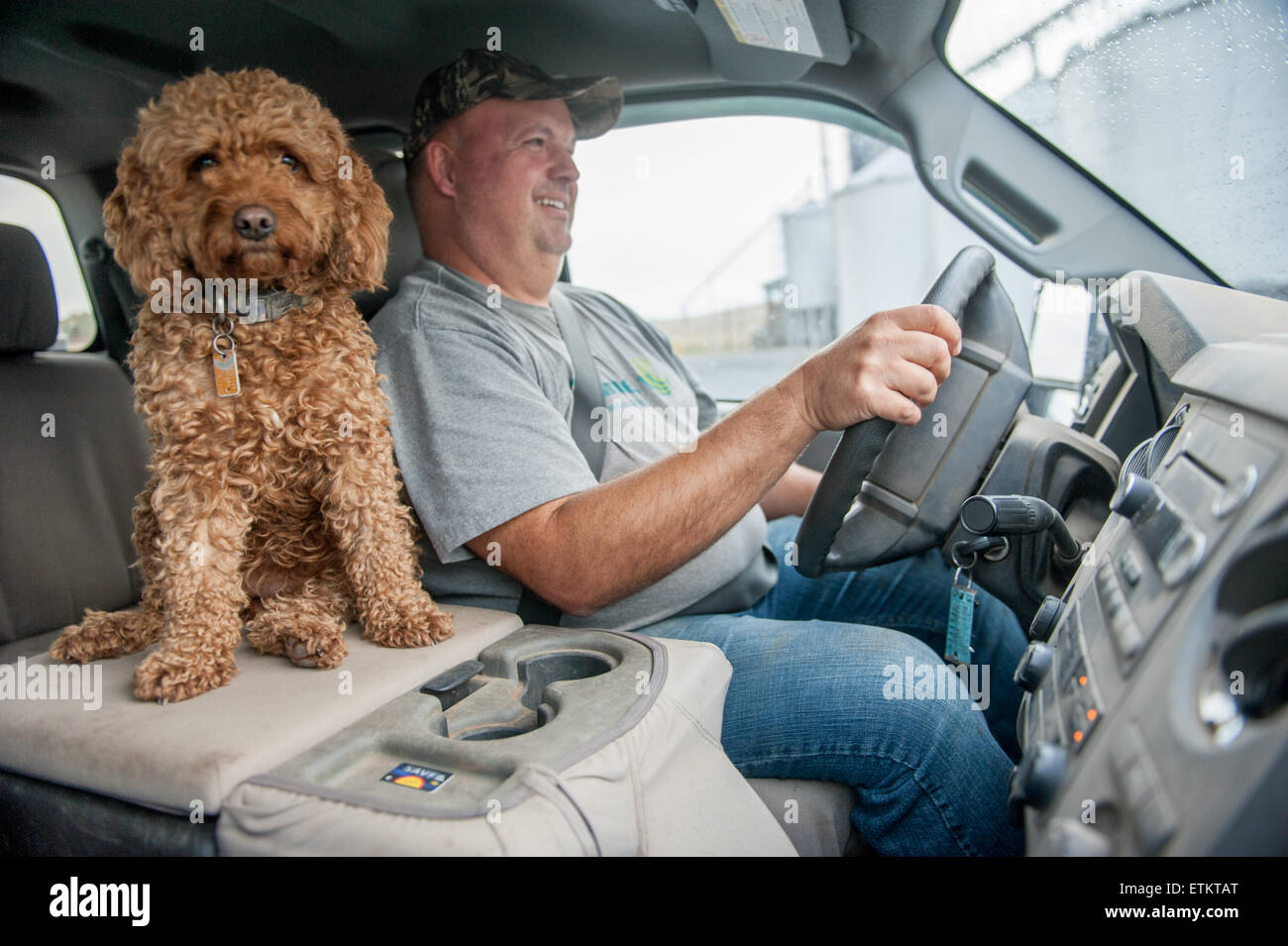 Farmer in the cab of his truck with his pet dog sitting next to him in Dalmatia, Pennsylvania, USA - Stock Image