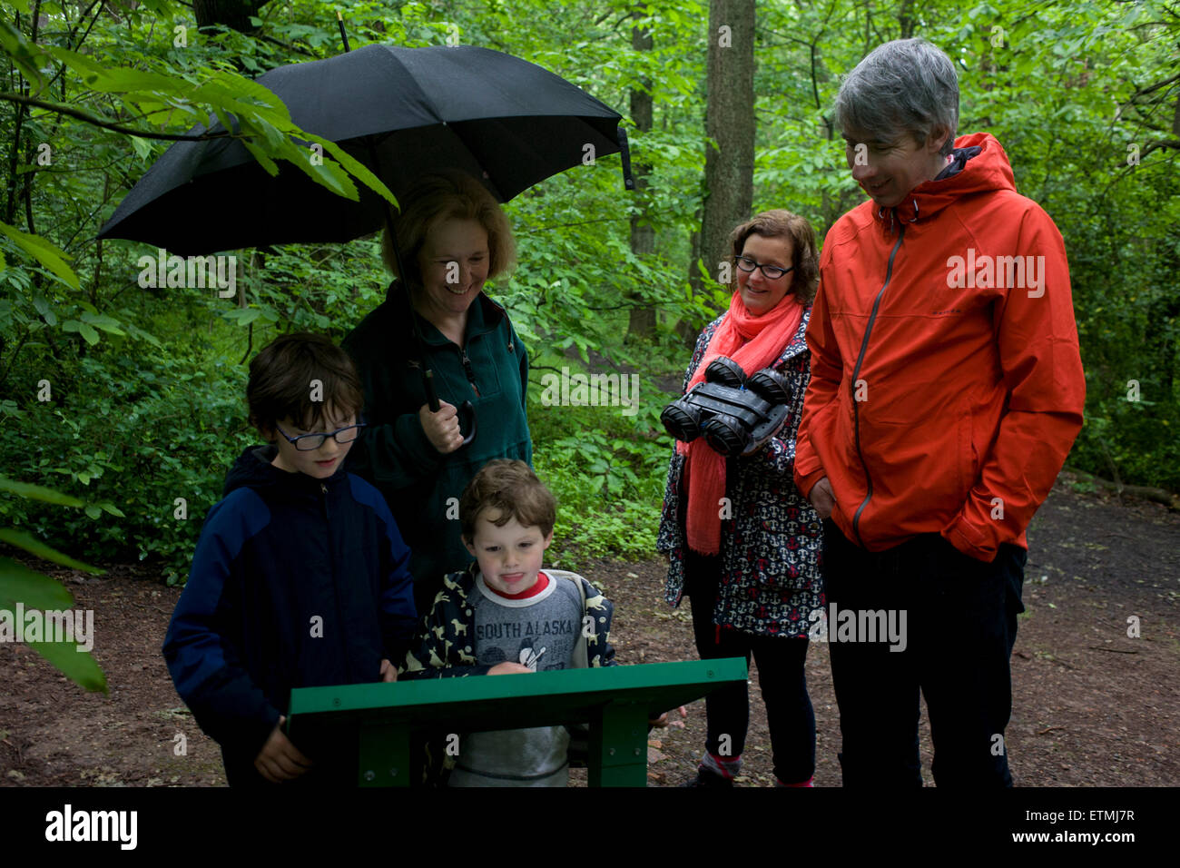 A family read information from a board in woods south of Sheffield, England UK. - Stock Image