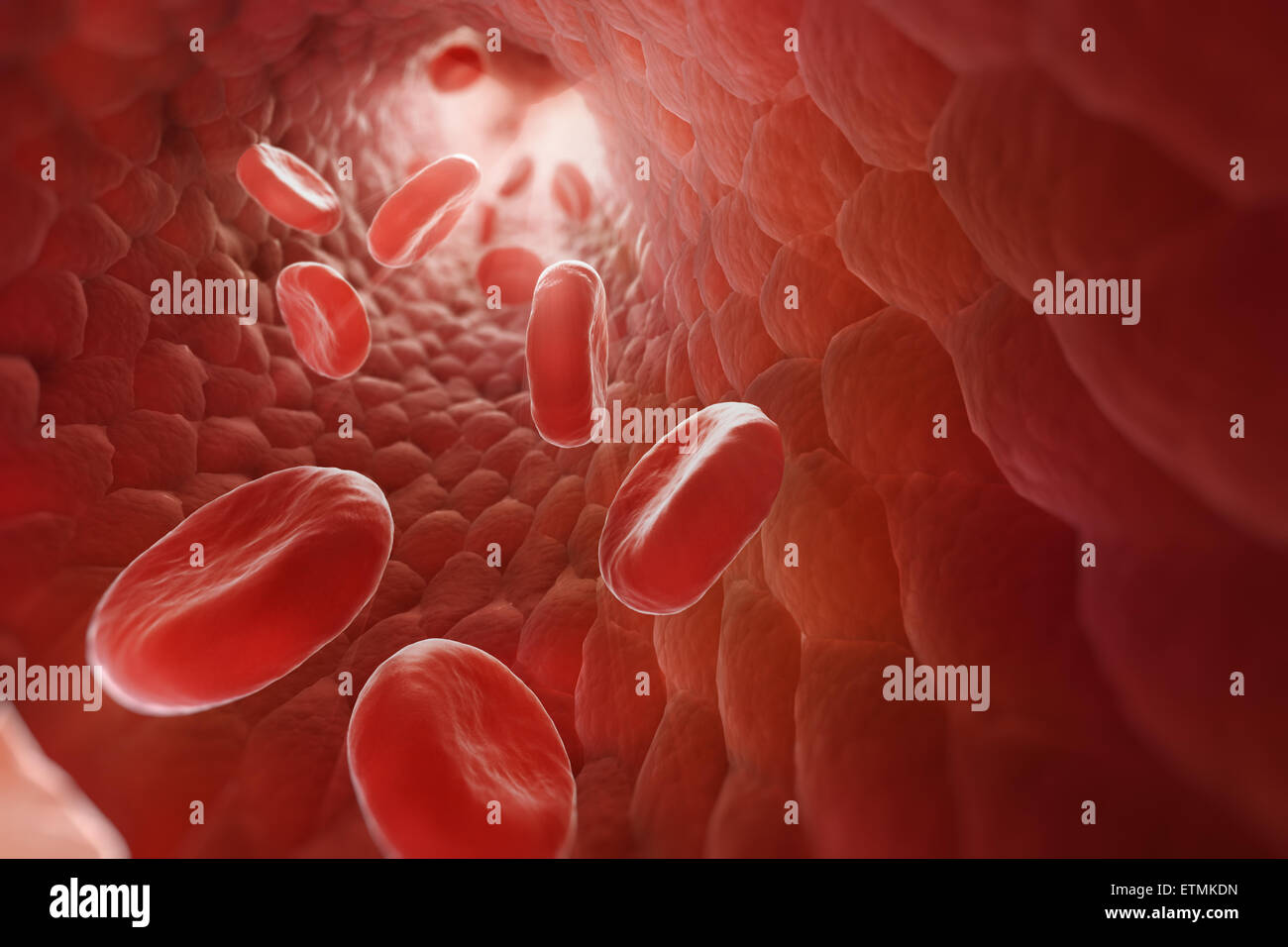 Stylized illustration showing red blood cells flowing through the blood stream. - Stock Image