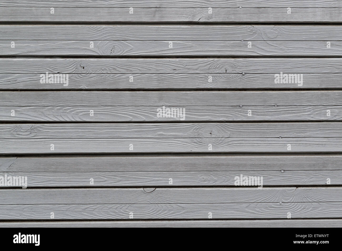 Grey painted wooden wall texture with knots and nail heads - Stock Image