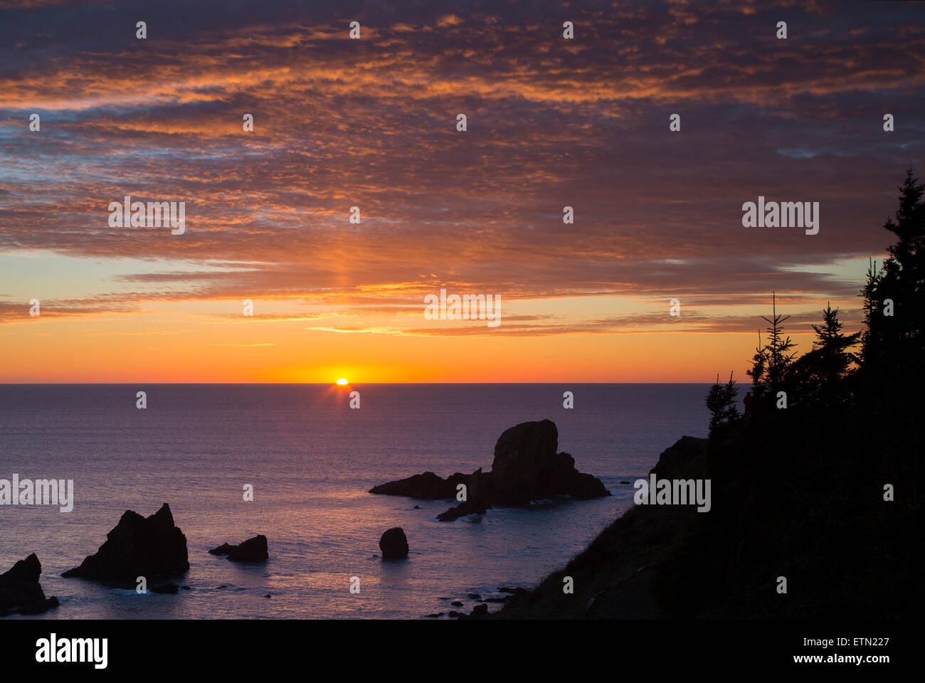 Setting Sunlight over Seastacks and Ecola State Park near Cannon Beach, Oregon, USA - Stock Image