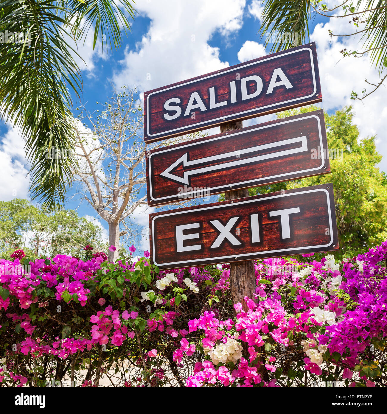 Sign Salida Exit with arrow, outdoors - Stock Image
