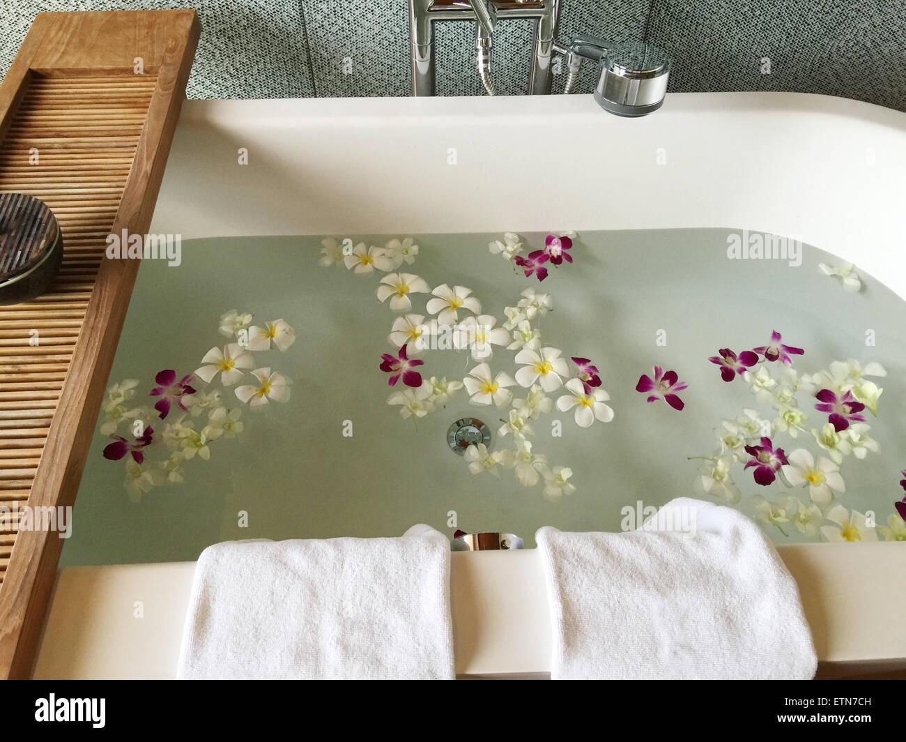 Frangipani flowers floating in a bath tub - Stock Image