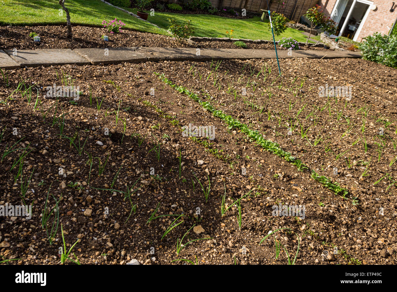 Garden Suburban House Stock Photos & Garden Suburban House Stock ...